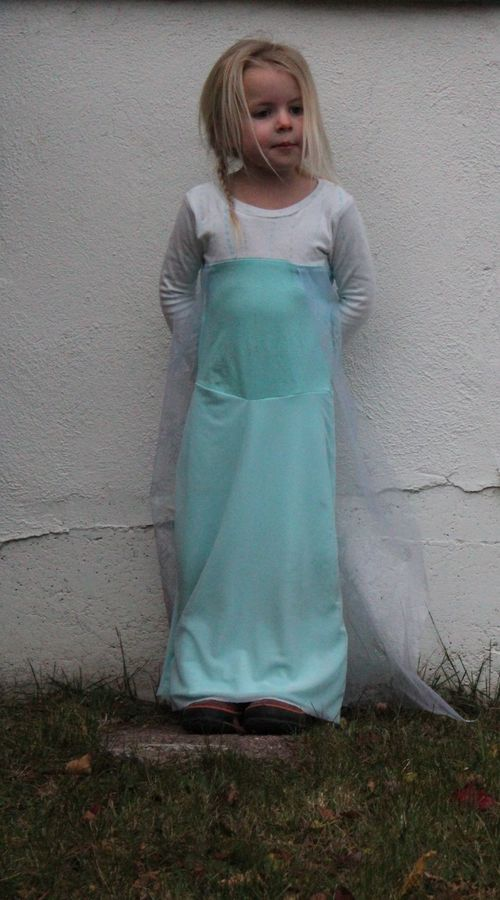 Handmade Elsa Costume